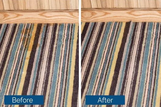 Before and after image of carpet stain removal