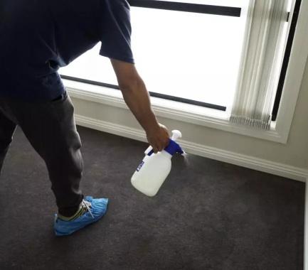 carpet cleaning antiviral sanitisation