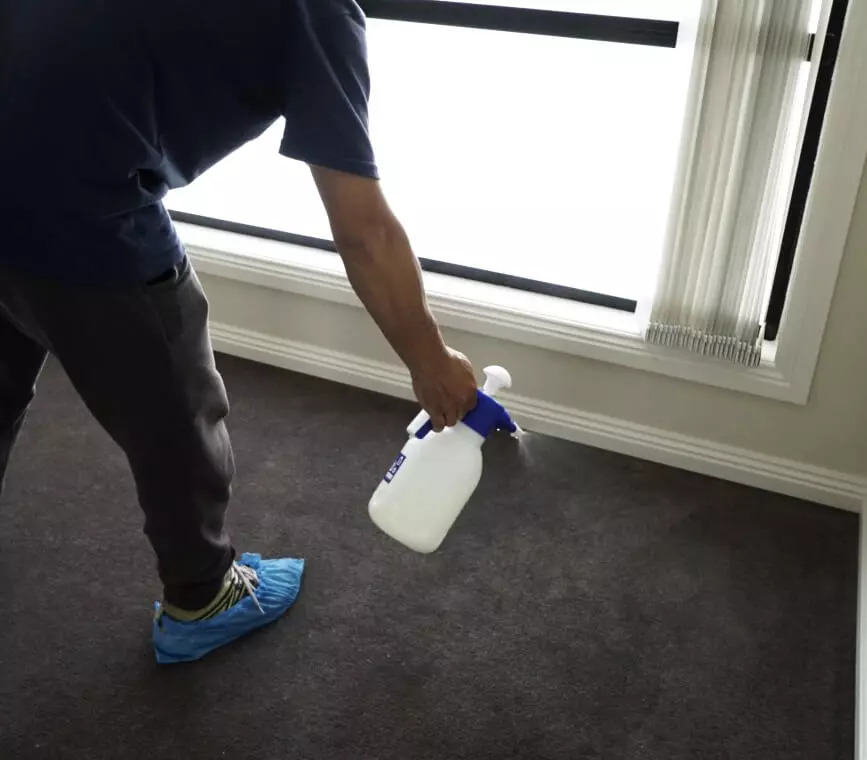 Get 20% Off Antiviral Sanitisation when booked with Carpet Cleaning